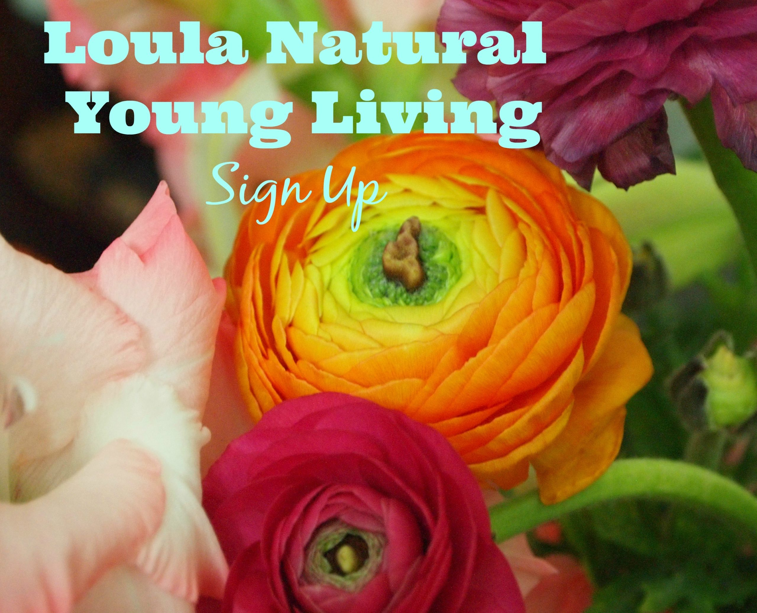 Loula Natural Essential Oils Sign up