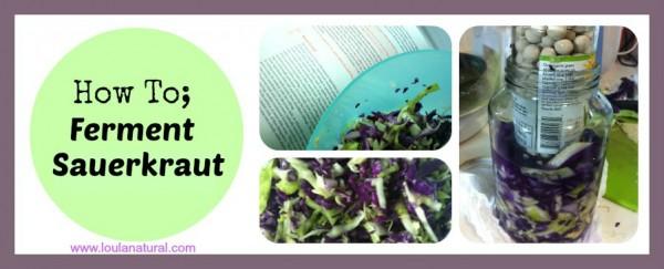 Ferment Saurkraut Loula Natural fb