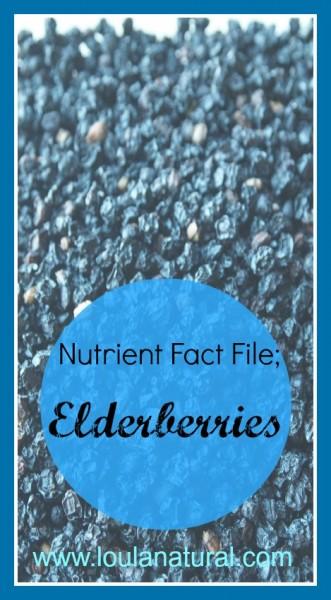 Nutrient Fact File Elderberries Loula Natural Pin