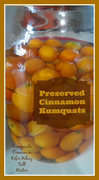 Preserved Cinnamon Kumquats Loula Natural pin