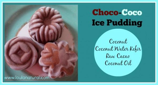 Chocococo Ice Pudding Loula Natural fb
