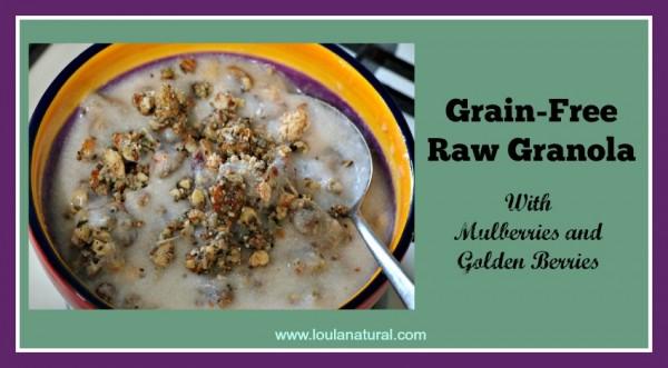 Grain Free Raw Granola Loula Natural