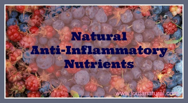 Natural Anti-Inflammatory Nutrients Loula Natural