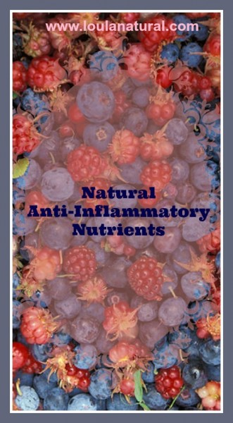 Natural Anti-Inflammatory Nutrients Loula Natural pin