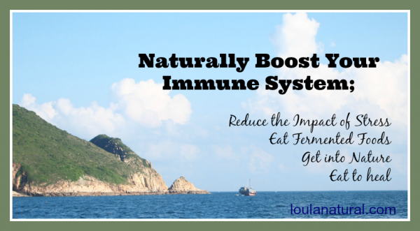 Naturally Boost Your Immune System Loula NAtural
