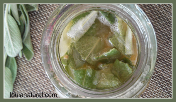 Lemon and sage cordial Loula Natural image2