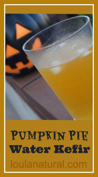 Pumpkin Pie Water Kefir Loula Natural