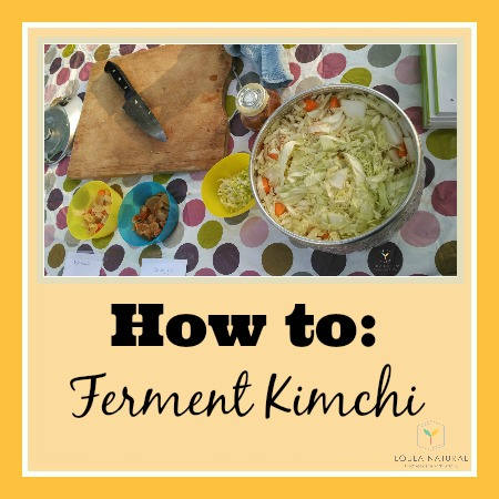How to Ferment; Kimchi